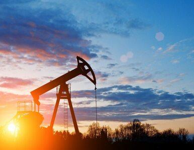 Co dalej z ceną ropy? Wróciła do poziomu sprzed Brexitu